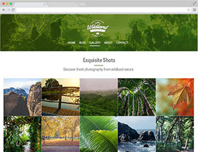 Gallery for Adobe Muse | Publiz CMS